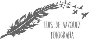 Logo antiguo Luis de Vázquez